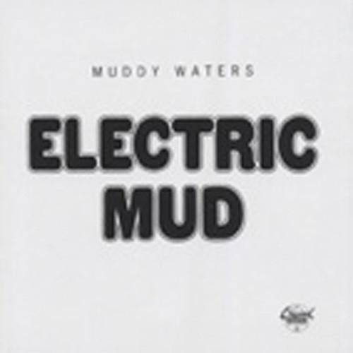 Muddy Waters Electric Mud