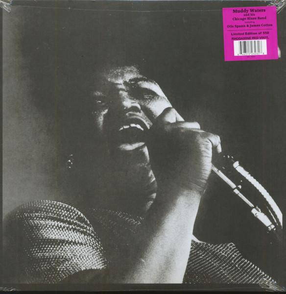 The Queen At Monterey (LP, 180g Red Vinyl, Ltd.)