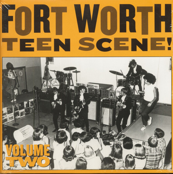 Fort Worth Teen Scene Vol.2 (LP)