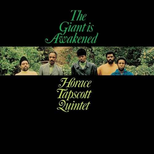 The Giant Is Awakened (LP, Neon Green Vinyl, Ltd.)