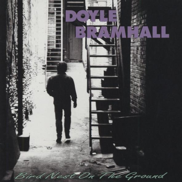 Bramhall, Doyle Bird Nest On The Ground