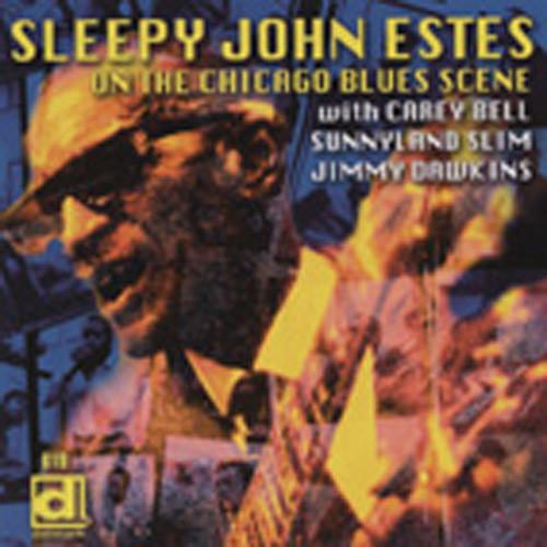 Estes, Sleepy John On The Chicago Scene